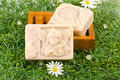 Handmade Soap On Green Grass Royalty Free Stock Images - 11508719