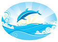 Dolphin Royalty Free Stock Photos - 11591098
