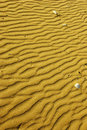 Sand Waves Stock Photo - 11599190