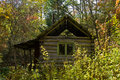 Cabin In Taiga 2 Royalty Free Stock Photography - 11602707