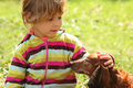 Little Girl Caress Dachshund Outdoor Stock Images - 11603644