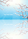 Winter Trees Branch Reflection Stock Photography - 11623342