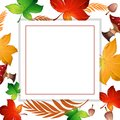Autumn Leaf And Mushroom Frame Royalty Free Stock Photo - 116219355