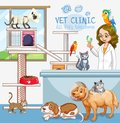 Cute Pets Clinic Welcome Sign Stock Photos - 116219533