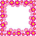 Spring Flowers Frame Stock Photography - 11665012