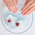 Beautiful Female Hands  Getting Spa Procedure Stock Images - 11682464