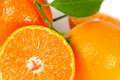 Fresh Tangerine With Leaves,close Up Stock Photography - 11686222