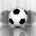Soccer Ball Royalty Free Stock Photo - 11687975