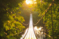 Suspension Bridge Royalty Free Stock Photo - 11707305