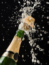 Champagne Bottle Royalty Free Stock Photography - 11754647