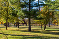 Early Fall Day At Park Royalty Free Stock Image - 11758516