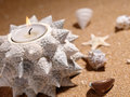 Still-life On The Sea Sand Royalty Free Stock Image - 11784496