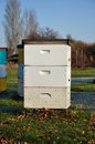 White Langstroth Bee Hive Stock Image - 11845031