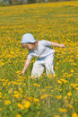 Boy With A Dandelion Royalty Free Stock Photography - 11871877