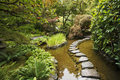 A Stream And A Decorative Path From Stones Stock Photo - 11874090