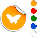 Butterfly  Icon. Royalty Free Stock Photo - 11891085