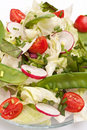 Healthy Salad With Bok Choy Royalty Free Stock Photography - 11923377