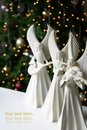 Christmas Angels Royalty Free Stock Photo - 11950645