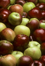 Pile Of Mixed Varieties Of Apples Stock Photos - 11963463