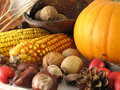 Fall Harvest Royalty Free Stock Images - 11966649