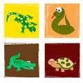 Reptiles Stock Images - 11966694