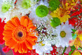 Bouquet Royalty Free Stock Image - 11975966