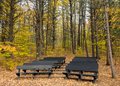 Theater In The Autumn Forest Royalty Free Stock Photos - 12043058