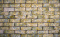Colorful Brick Background Royalty Free Stock Photo - 12045645