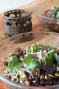 Indian Lentil Salad Royalty Free Stock Photography - 12059617