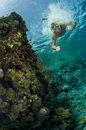 Male Swimming Underwater On Reef Royalty Free Stock Photo - 12071745