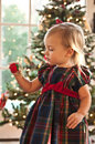 The Christmas Ornament Stock Images - 12079964