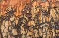 Rust Background Stock Photography - 12099902