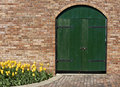 Old Green Wooden Door With Yellow Tulips Stock Photos - 12123593