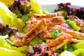 Sesame Chicken Salad Royalty Free Stock Photography - 12137487