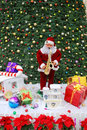 Christmas Decoration Stock Photography - 12168692