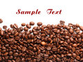 Coffee Bean Royalty Free Stock Photos - 12210328