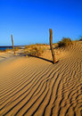 Sand-dunes Stock Images - 12356024