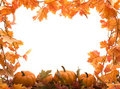 Pumpkins With Fall Leaves Royalty Free Stock Photos - 1241578