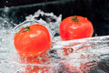 Tomato Royalty Free Stock Photo - 12408755