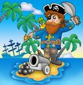 Pirate Shooting From Cannon Stock Image - 12453701