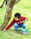 A Boy Picks Up Easter Eggs Stock Photography - 12621112