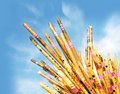 Flute Royalty Free Stock Image - 12649886