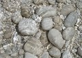 Stones In Sea Water Royalty Free Stock Image - 1273166
