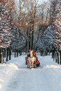 Winter Holiday-walk In Carriage Stock Image - 12768711