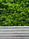 Bench With Leaves Royalty Free Stock Photography - 12821477