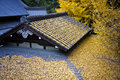 Japanese Temple Roof Covered By Leafs Stock Photos - 12822853