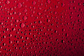 Water Drops Background Royalty Free Stock Photo - 12868465
