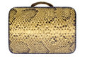 Snakeskin Bag W/ Path (Side View) Stock Photo - 1306340