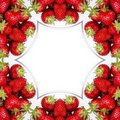 Strawberry Luxury Stock Photography - 1309442