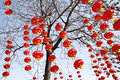 Red Lanterns In New Year Stock Photo - 13060540